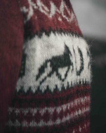 Kapuzen-Pullover - Islandpferd Hufeisen - rot