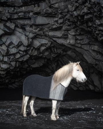 Abschwitzdecke Isländer - Borg - schwarz