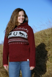Hooded pullover - iceland horse - red