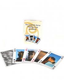 Spielkarten - Islandpferde - 53 Fotos