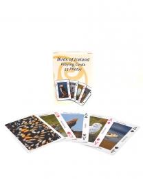 Spielkarten - Vögel von Island - 53 Fotos