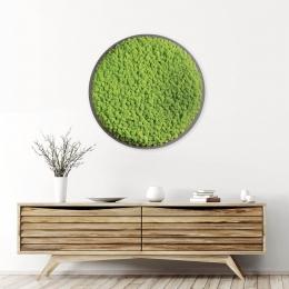 3D Wandbild - Isländisches Moos - 70 cm Durchmesser